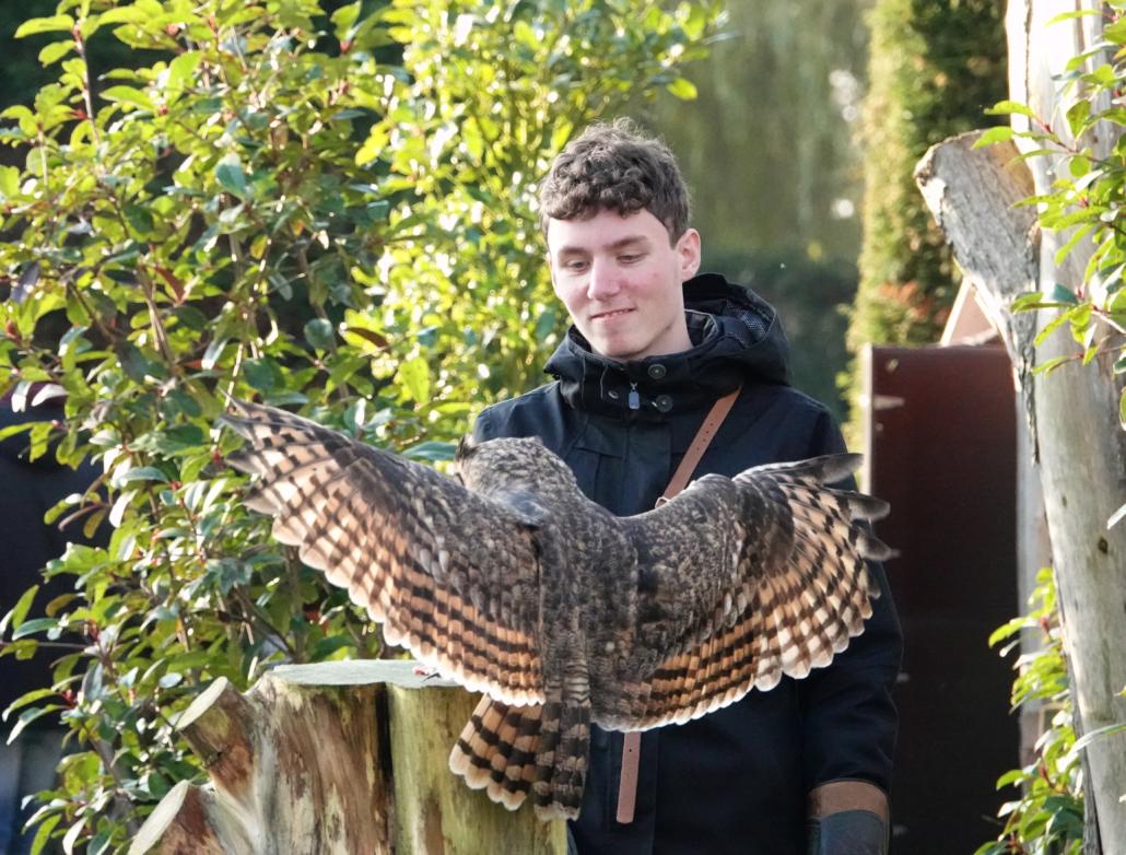 Dagbesteding kwetsbare doelgroepen autisme Wings of Change Roofvogels en Uilen