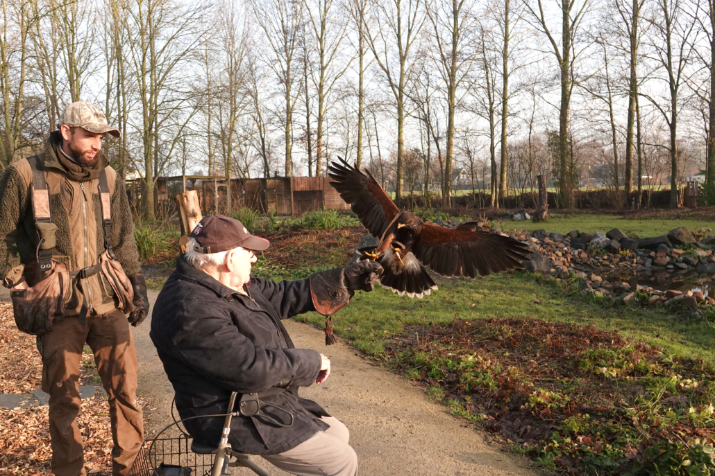 Inloophuis Sociale Huiskamer activiteit roofvogels en uilen
